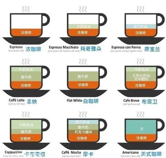 咖啡的分类