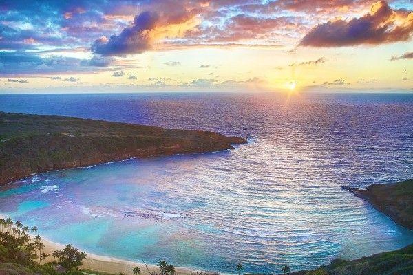 无限夏威夷王国