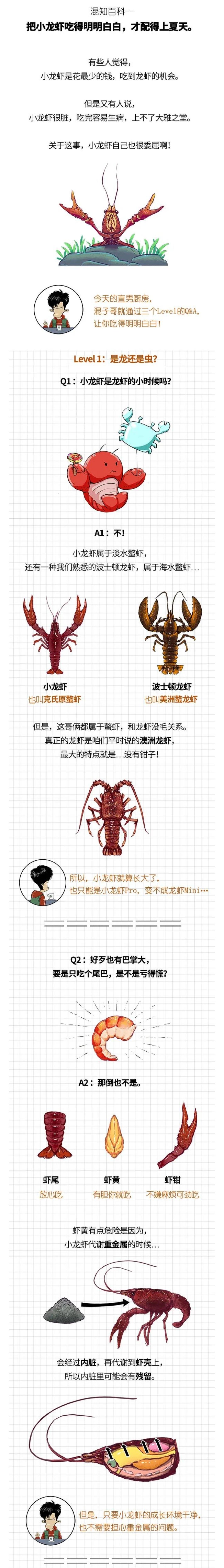 把小龙虾吃得明明白白1
